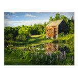 Reflexiones de la primavera en el Adirondacks, N.Y Postal