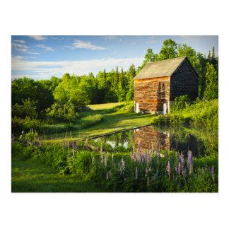 Reflexiones de la primavera en el Adirondacks, Tarjetas Postales