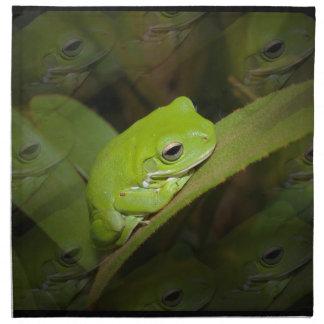 Reflexiones de la rana fijadas de cuatro servilletas de papel