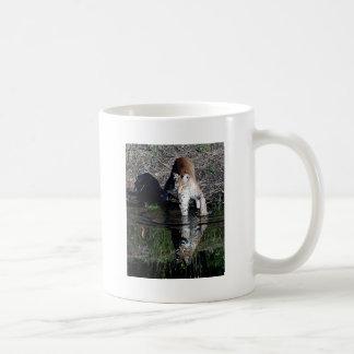 Reflexiones de un lince siberiano taza de café
