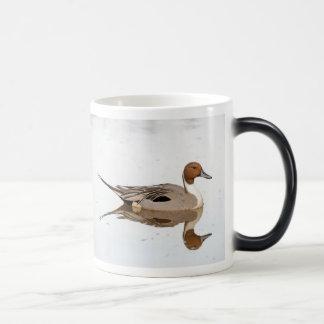 Reflexiones de un pato rojizo septentrional taza mágica