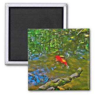 Reflexiones del agua y los imanes de los pescados imán cuadrado
