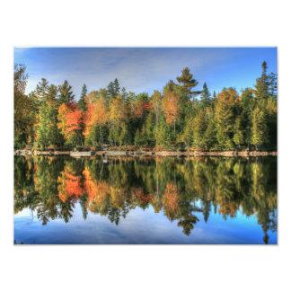 Reflexiones del lago fall Foliage del otoño de Cojinete
