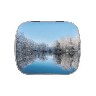 Reflexiones del lago tree del invierno Nevado Frascos De Caramelos