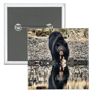 Reflexiones del oso negro chapa cuadrada 5 cm