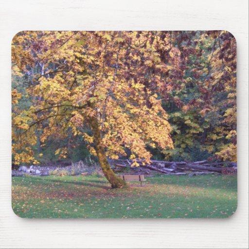 Reflexiones del otoño tapete de ratones