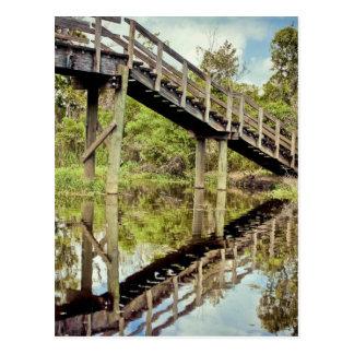 Reflexiones del pantano de Barataria Postal