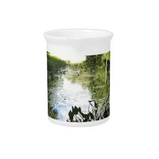 Reflexiones del pantano jarra