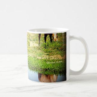 Reflexiones en el agua - caballos taza de café