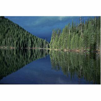 Reflexiones en un lago esculturas fotográficas