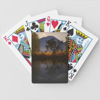 Reflexiones iluminadas por la luna del prado de la baraja cartas de poker