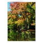 Reflexiones preciosas del otoño felicitación