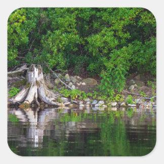 Reflexiones verdes pegatina cuadrada