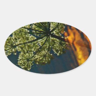 REFLEXIONES VERDES Y ANARANJADAS EN UNA CHARCA PEGATINA OVALADA