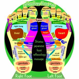 reflexology foot map standing photo sculpture