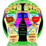 reflexology foot map statuette