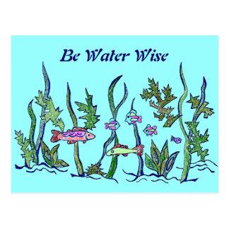 refrán sabio del agua postal