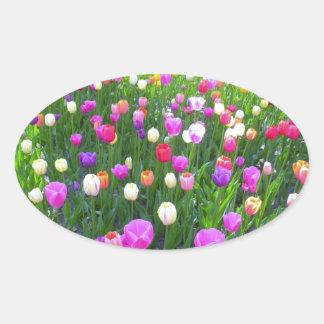 Refreshing Mixed Tulip Garden Oval Sticker