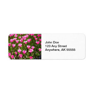 Refreshing Pink Tulip Garden Label