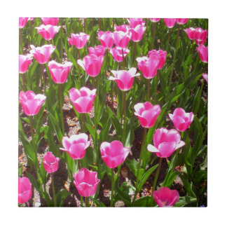 Refreshing Pink Tulip Garden Small Square Tile