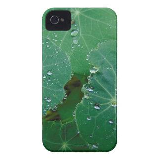 Refreshing Rain Drops iPhone 4 Cover