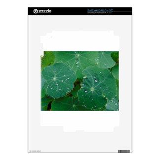 Refreshing Rain Drops Skin For The iPad 2