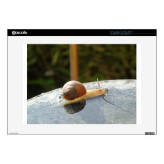 Refreshing Snail Decals For Laptops