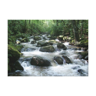 Refreshing Waterfall on Canvas