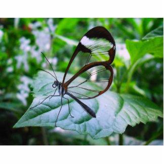 refresqúese como vidrio adorno fotoescultura