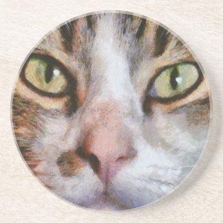 Refresqúese para los gatos posavasos manualidades