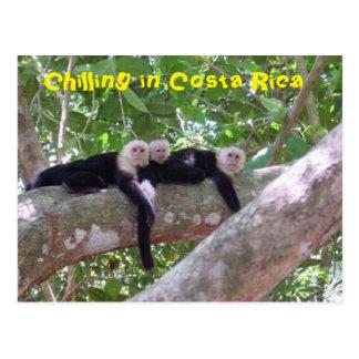 Refrigeración en Costa Rica Postales