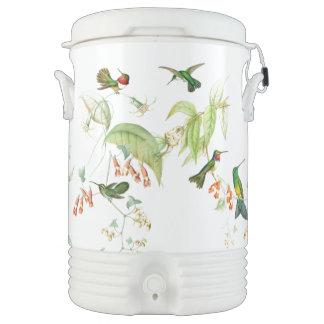 Refrigerador del iglú de los colibríes de Goulds Enfriador De Bebida Igloo
