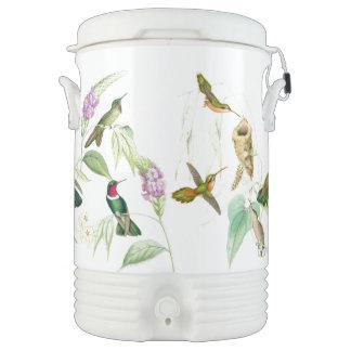 Refrigerador del iglú de los colibríes de Goulds Vaso Enfriador Igloo