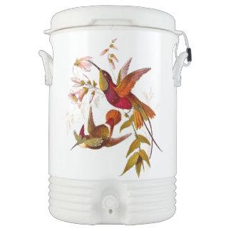Refrigerador del iglú de los colibríes vaso enfriador igloo