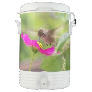 Refrigerador floral del iglú de las flores del vaso enfriador igloo
