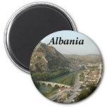 Refrigerador mA de Albania del imán de Albania (Al