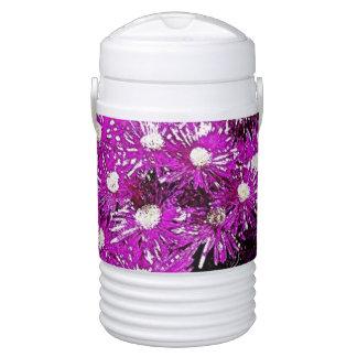 Refrigerador púrpura del iglú del extracto de la p refrigerador de bebida igloo