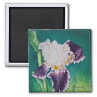 Refrigerator Magnet Purple Iris Flower Nature