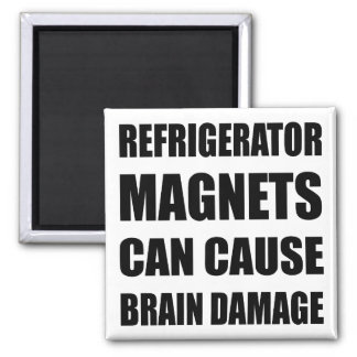 Refrigerator Magnets Can Cause Brain Damage
