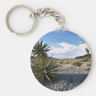 Refuge desert habitat key chains