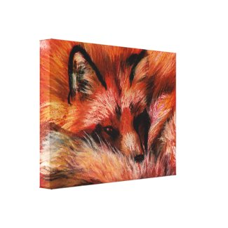 Refuge Fox Canvas Print