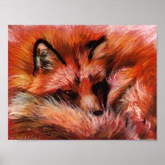 Refuge Fox Poster