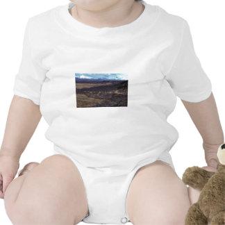 Refugio de Becharof escénico Camiseta