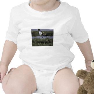 Refugio de la ave migratoria del río del oso trajes de bebé
