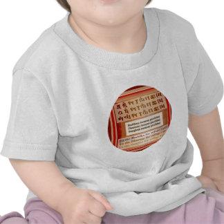 Refugio que busca en Buda Camiseta