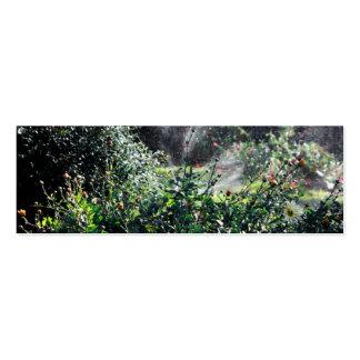 Regadera en el craquelure del jardín