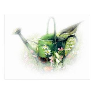regadera verde con el pájaro tarjeta postal