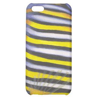 Regal Angelfish 02 iPhone 5C Cases