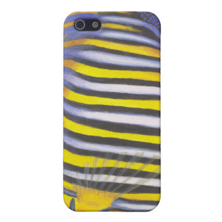 Regal Angelfish 02 iPhone SE/5/5s Cover