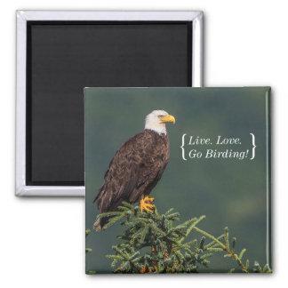Regal Bald Eagle 2 Inch Square Magnet